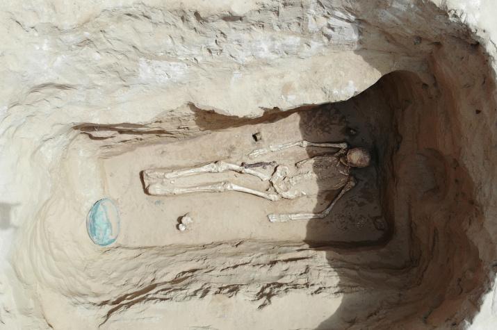 Тайна раскрыта: учёные впервые рассказали о кургане с сарматским золотом